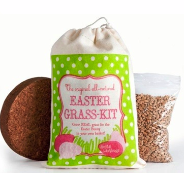 Grow your own. Easter grass, that is.