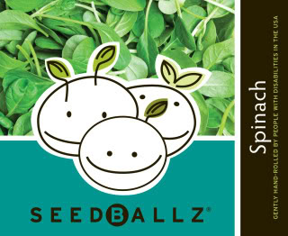 How does your garden grow? With SeedBallz