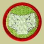 Merit Badges for Diaper Changing? Right On.
