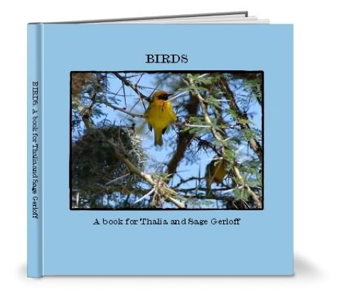 DIY Shutterfly photo learning book winners – Behold the creativity