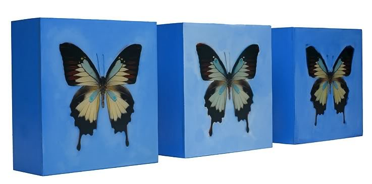 Butterfly, Butterfly Fly Away Home (Which is Actually a Really Dark Rhyme When You Learn the Words)