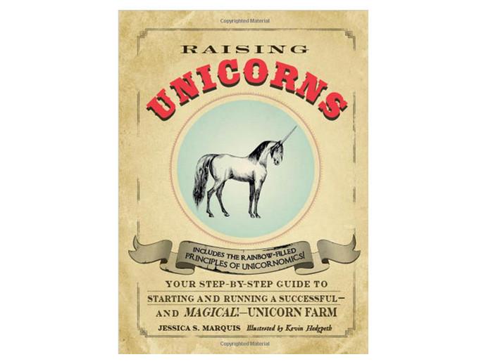 holiday gift: raising unicorns book | cool mom picks