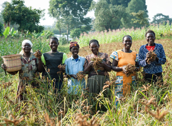International Women's Day farmers for ONE | Cool Mom Picks