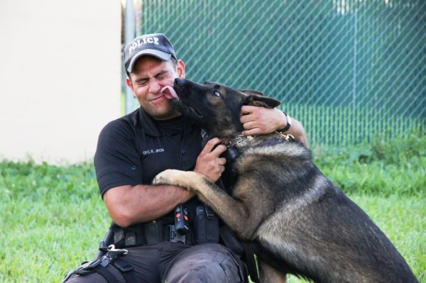 Thank a Police Dog week: Flash of the Miami PD