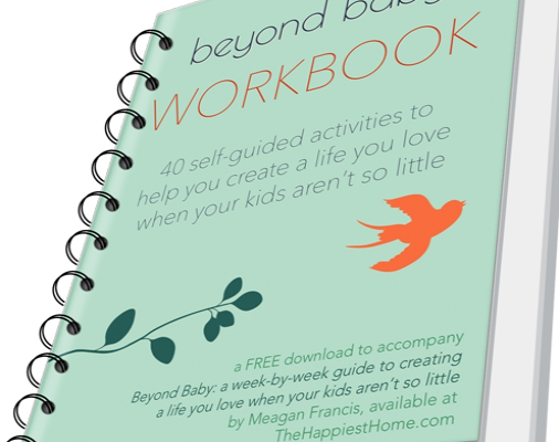 Beyond Baby by Meagan Francis Workbook | Cool Mom PIcks