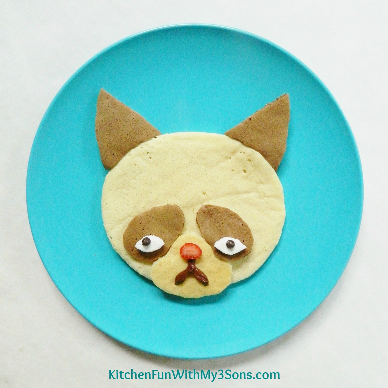 Web Coolness: Grumpy Cat pancakes, a high-fashion rainbow loom dress, birth photos on Facebook, and more.