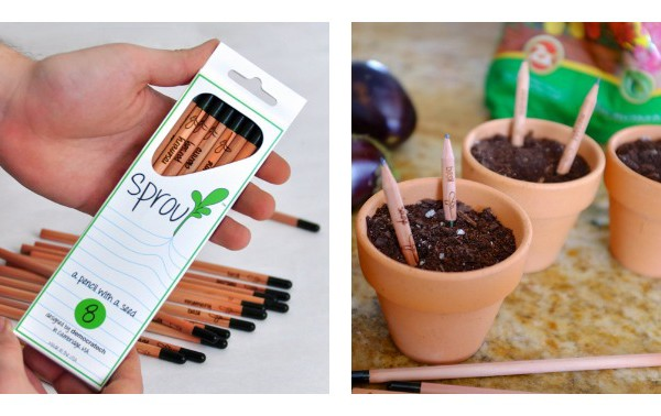 Sprouting Pencils - Sprout
