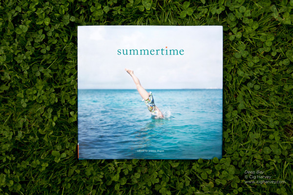 Summertime book by Joanne Dugan
