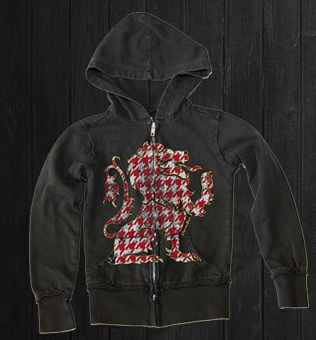 Hoodies for boys: Lion's Tooth hoodie from Warrior Poet