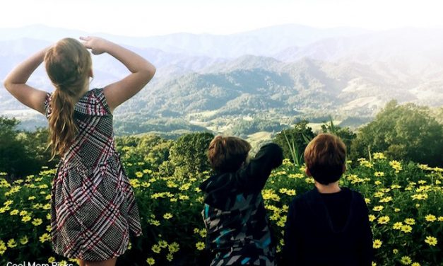 How to plan an awesome long weekend with the kids in Asheville, NC