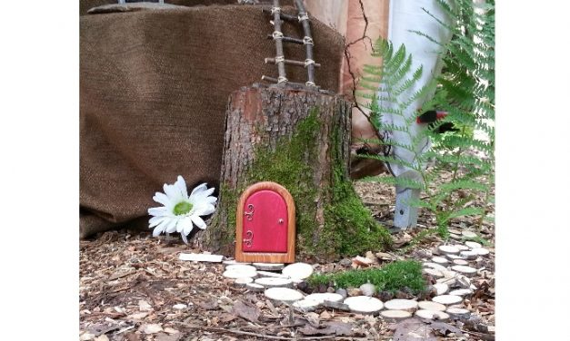 Handcrafted fairy doors that invite magical visitors from Hobbits to House Elves. No lost teeth necessary.
