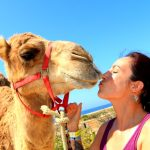 A Cabo resort for active families: Kiss a camel, swim with angels, or just relax.