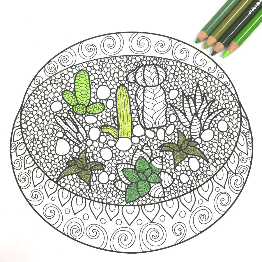 Summer coloring pages for teens: Terrarium Coloring Page | Popshop Americ