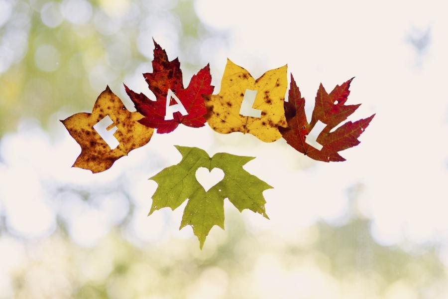 Kids crafts using fall leaves: Leaf Window Decorations | Uteki