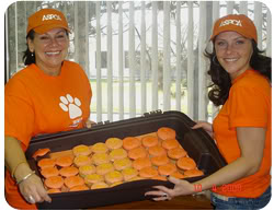 Going orange for the ASPCA