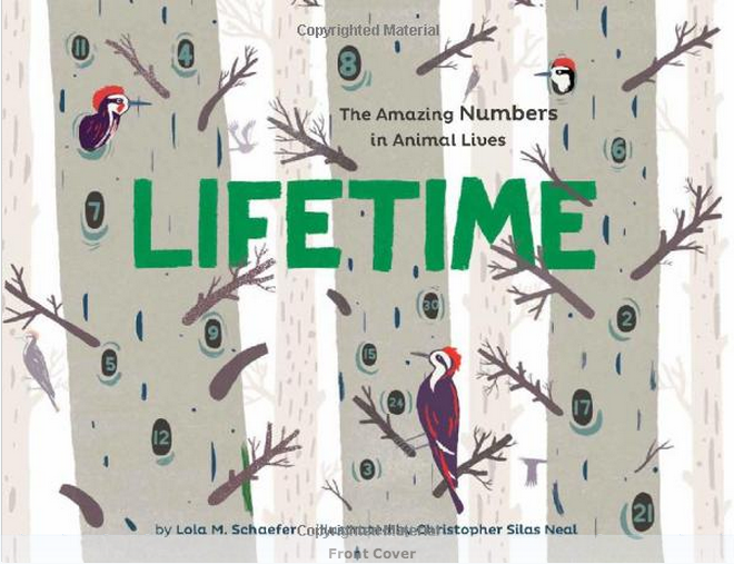 A numbers book for kids who like animals. Or an animal book for kids who like numbers.