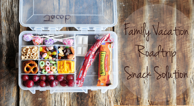 5 brilliant DIY travel snack ideas for kids that will save the day.