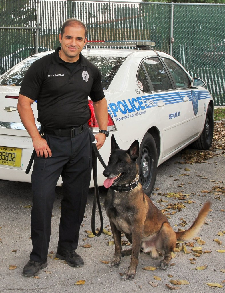 Thank a Police Dog Week - Dash from the Miami PD