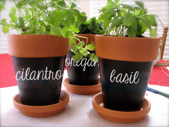 Pretty herb labels that help you tell your sorrel from your sage