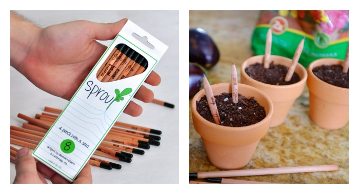 I am Groot. Well, these cool, sprouting pencils are.
