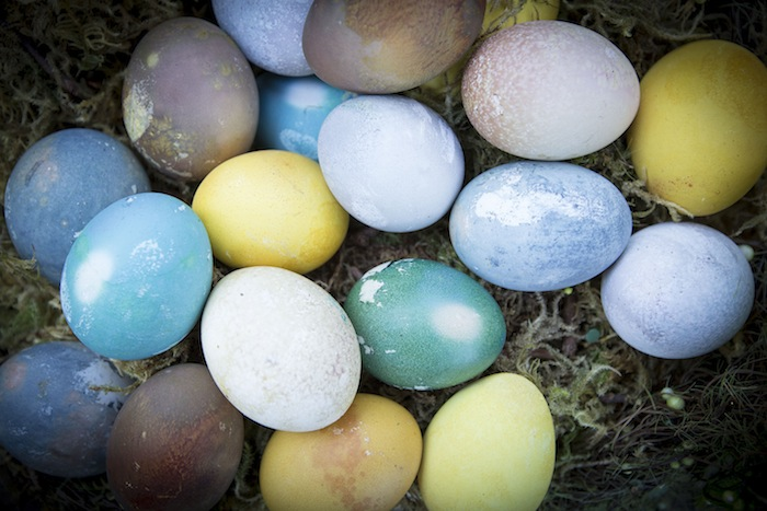 Making natural Easter egg dyes perfectly: 2 expert methods and step-by-step tips