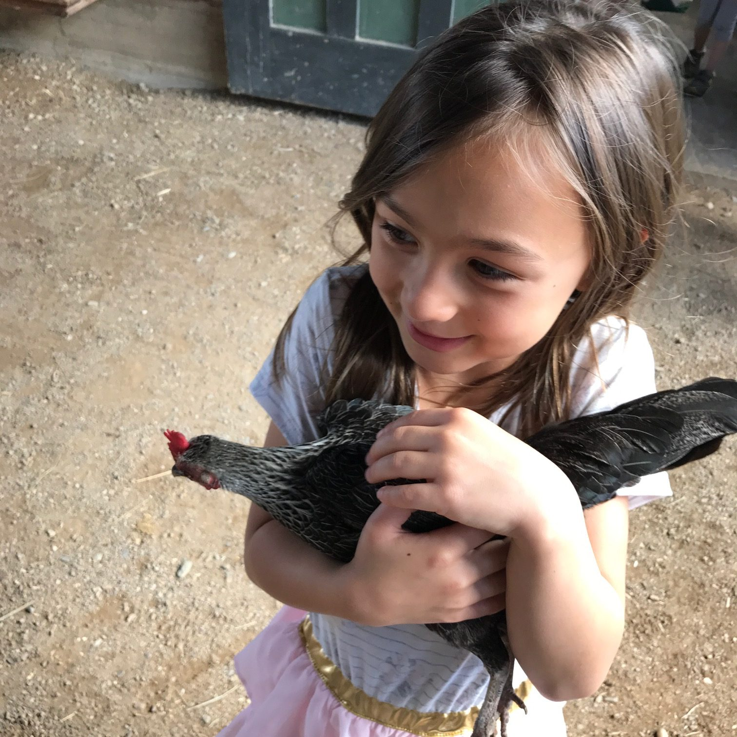 Why you should take a solo road trip with your kids: Fun at Shelburne Farms in Vermont