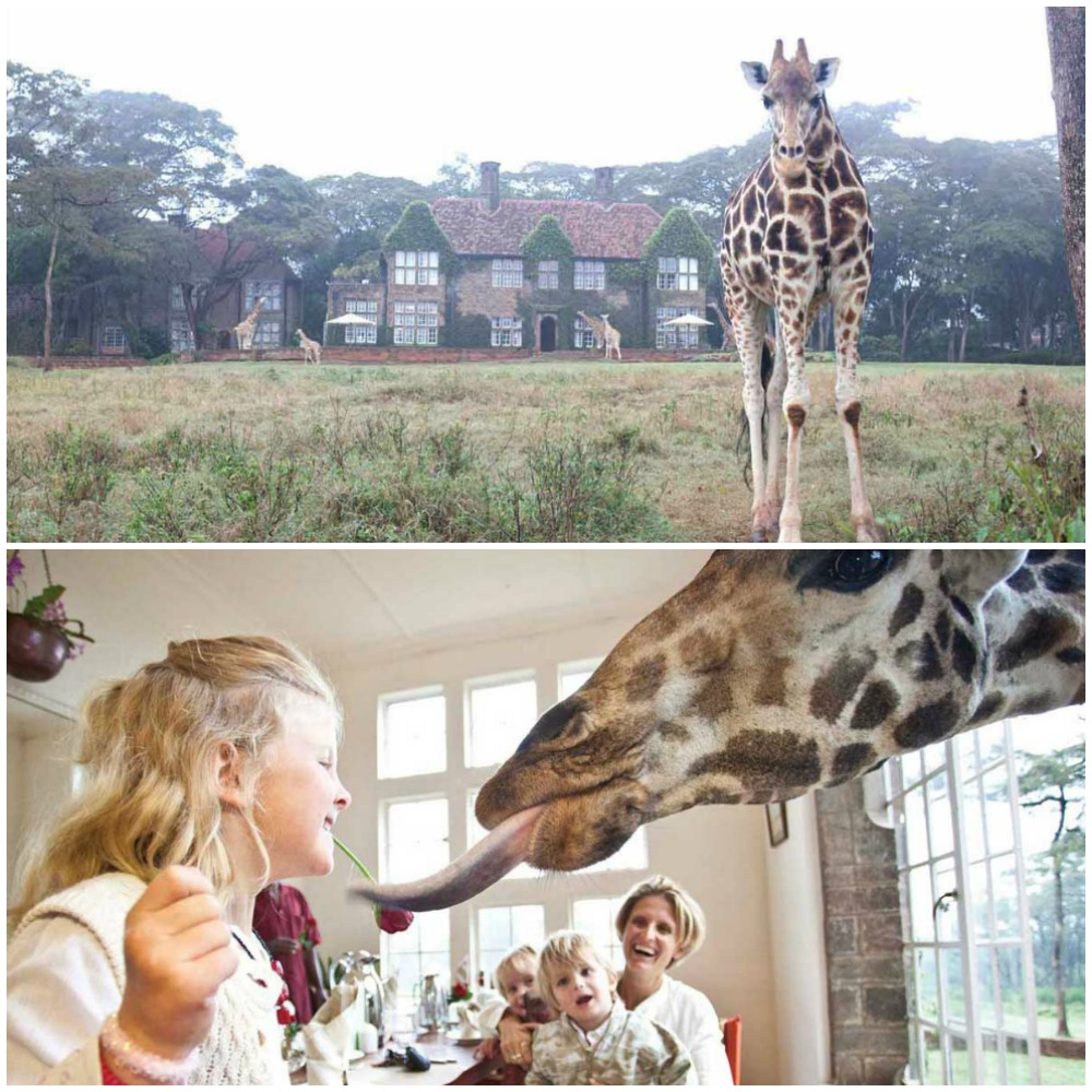 Coolest vacations to take with the kids: Giraffe Manor in Kenya