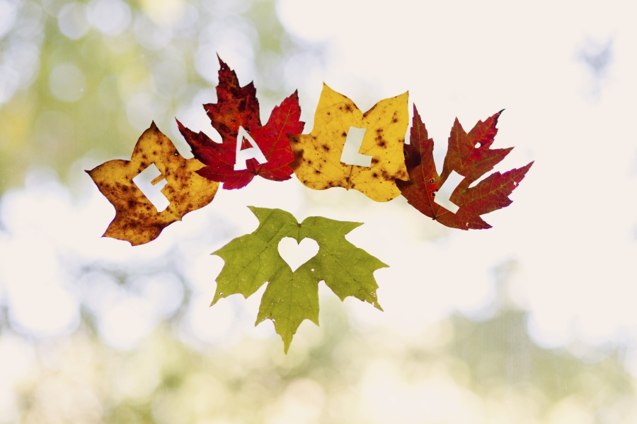 Kids Craft Ideas For Fall Part - 44: Kids Crafts Using Fall Leaves: Leaf Window Decorations | Uteki