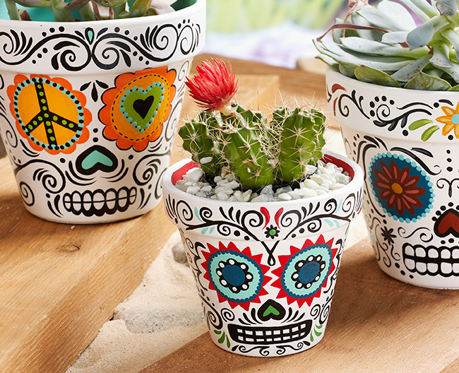 Daisy Eyes Sugar Skull Planters | Plaid Online