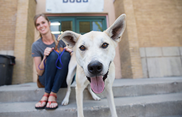 Giving Tuesday: Best Friends Animal Society