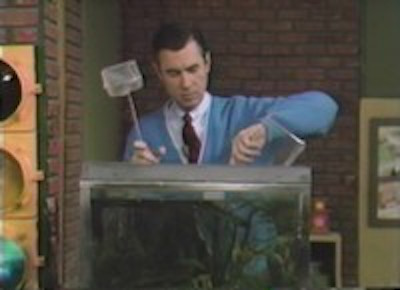 Mister Rogers' Neighborhood: Mister Rogers buries a goldfish