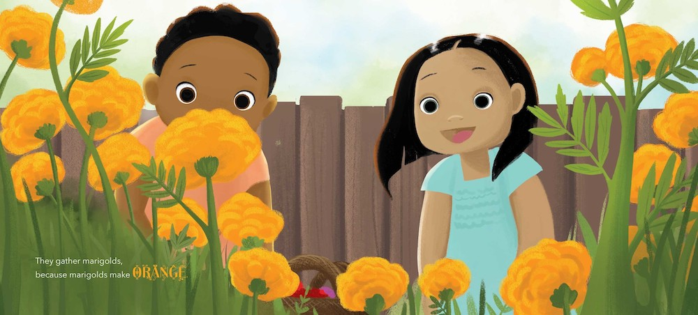 Book about Holi for kids: Kids pick marigolds to make yellow powder in Festival of Countries by Kabir & Surishtha Sehgal and Vashti Harrison