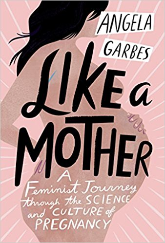 Great new beach reads from women of color: Like a Mother by Angela Garbes