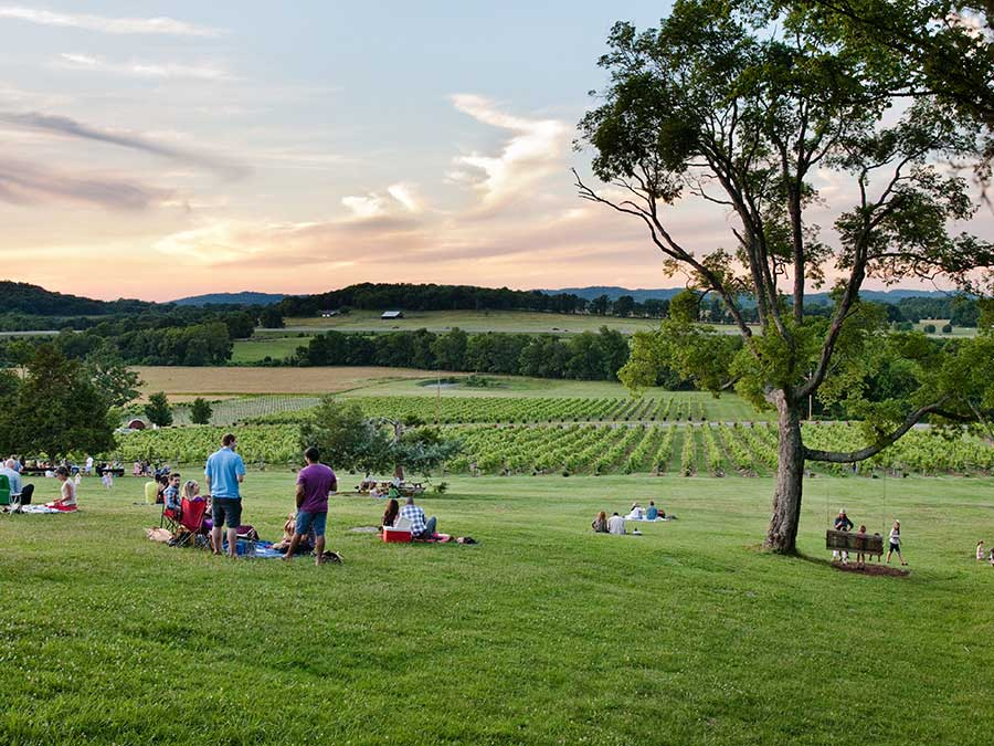 Things to do in Nashville with kids: Enjoy the music and scenery at Arrington Vineyards