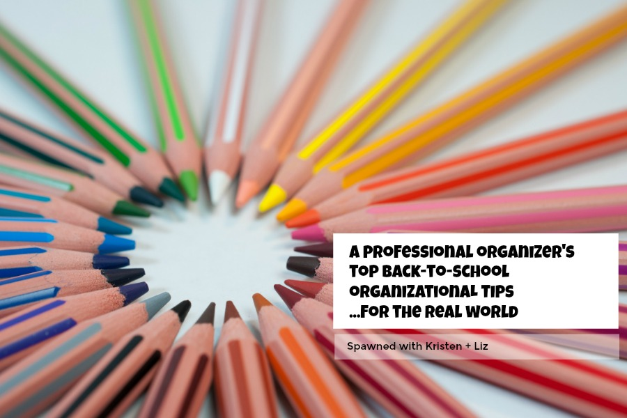 A professional organizer's top back-to-school organizational tips for the real world | Spawned Ep 119