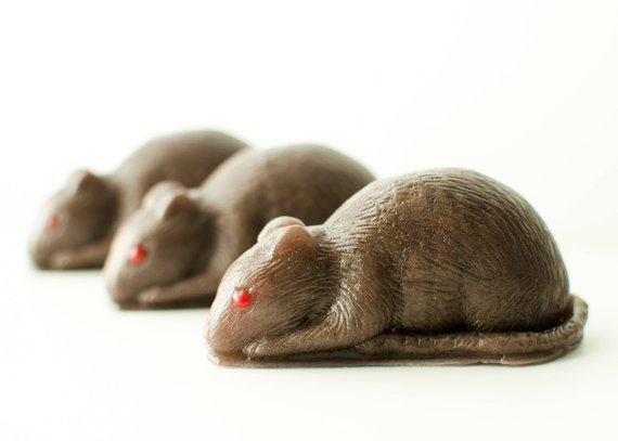 Non-candy Halloween gifts for tweens and teens: Rat soap on Etsy