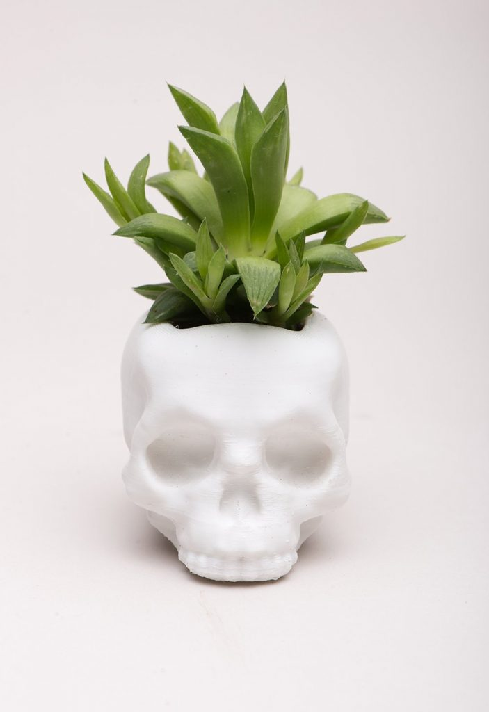 3D printed skull planter from Meow3D: Cool Halloween gifts for cynical tweens and teens