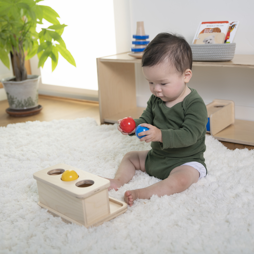 Monti Toys Montessori subscription includes learning toys like push balls + helpful resources for parents (sponsor)