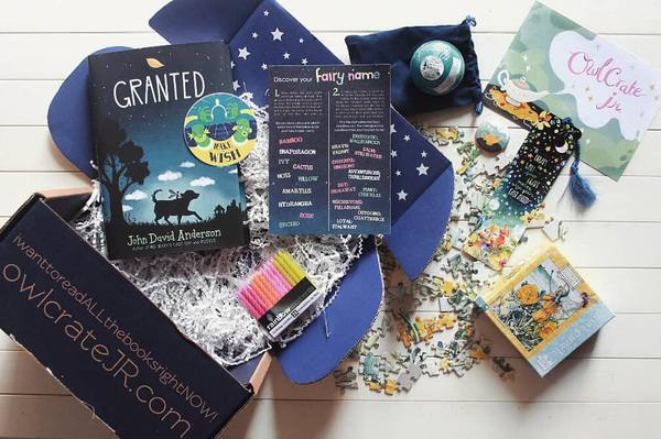 Cool gift ideas for tween girls: Owlcrate Book Subscription Box