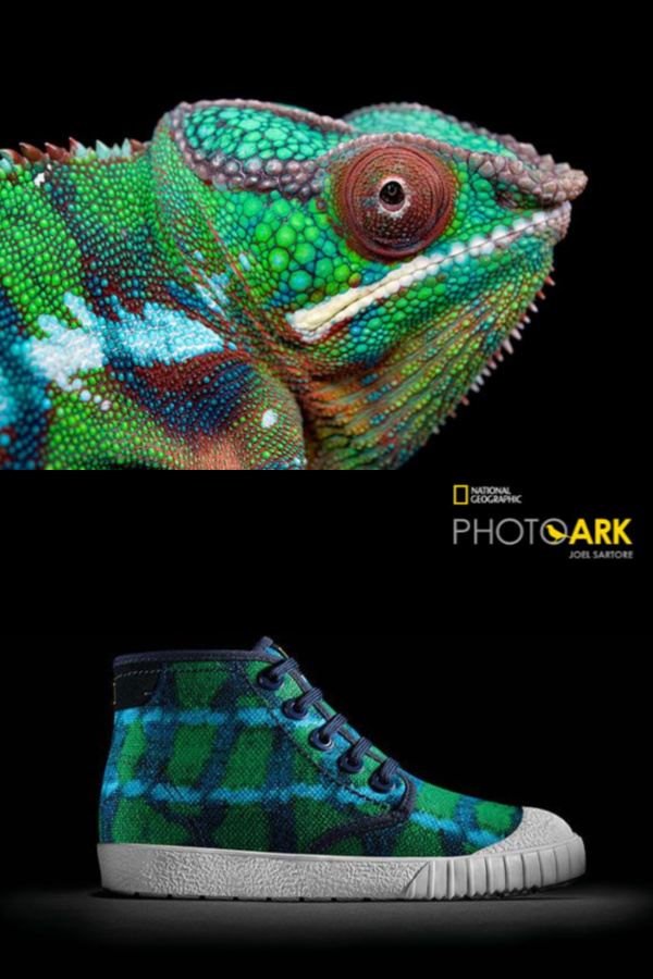 38cf995dea Earth Day Pick  The wonderful new Clarks Kids x National Geographic ...