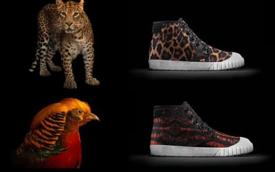 Earth Day Pick: The wonderful new Clarks Kids x National Geographic sneaker collection