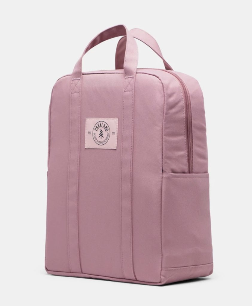 Parkland Remy Backpack for Teens in Skylar