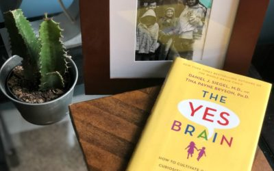 Cool Mom Picks Book Club Selection 7: The Yes Brain, by Daniel J. Siegel and Tina Payne Bryson