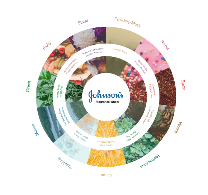 The fragrance wheel of Johnson's scents for baby (sponsor