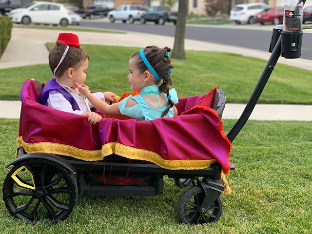 Best wagon for families: The Veer Cruiser dressed up for Halloween | Photo by @debra_ott on Instagram