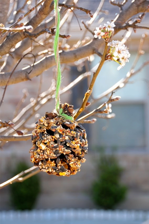 Make a DIY bird feeder from Dana Made It for Earth Day