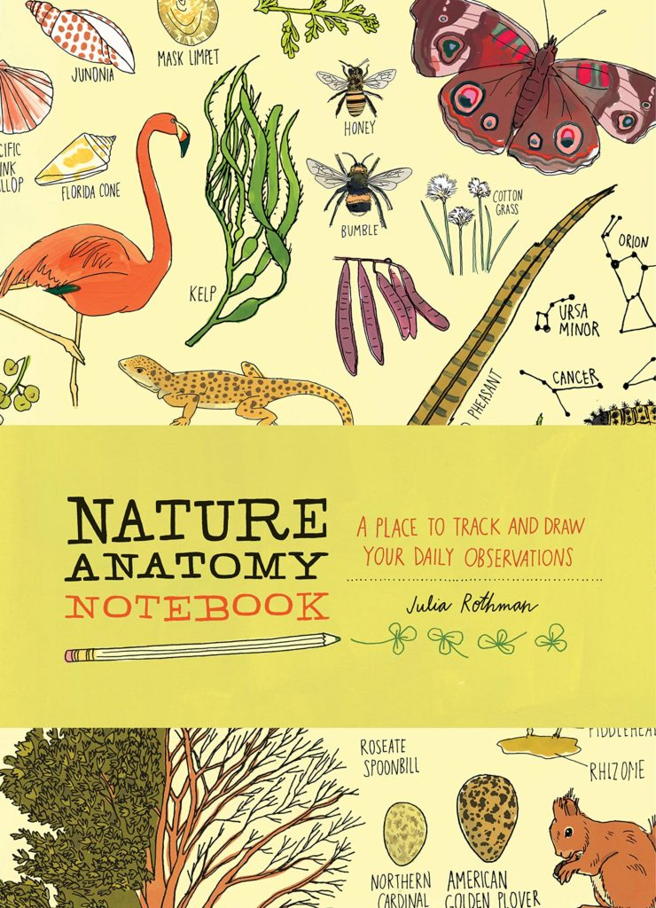 Earth Day activities with kids: Start a nature notebook with kids like this one from Julia Rothman