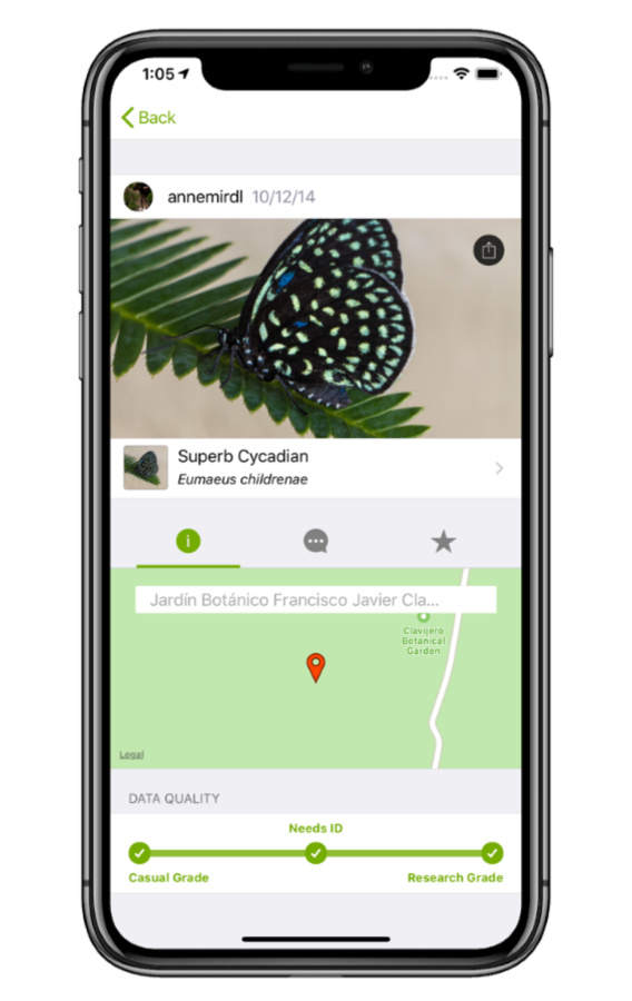 The Seek app by iNaturalist lets you identify birds, butterflies, bugs, and wildlife of all kinds just by pointing your phone