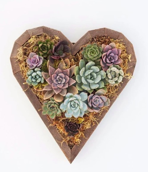 This DIY kit from Succulent Gardens makes a thoughtful Valentine's Day gift for a special friend