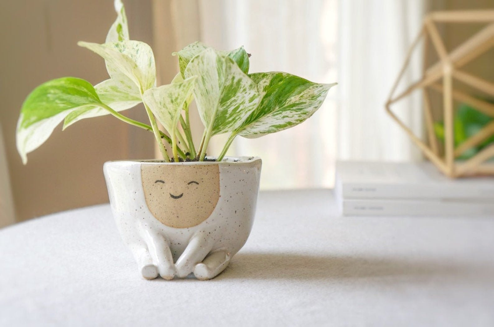 Home office gifts for mom: A fun planter for her desk, like this one at Ceramic Sense
